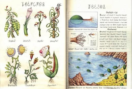 codex seraphinianus3